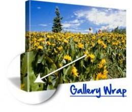 canvas photo free print