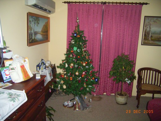 Our usual Christmas tree to remind us of real pine trees growing wildly where we come from.
