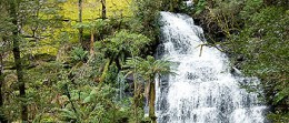A waterfall in the Otways.