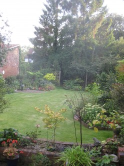 Sanctuary Town: SHEN therapy In Bewdley, Worcestershire