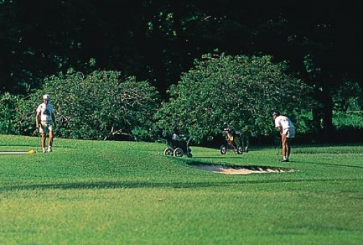 Golf is one of the many activities you can enjoy