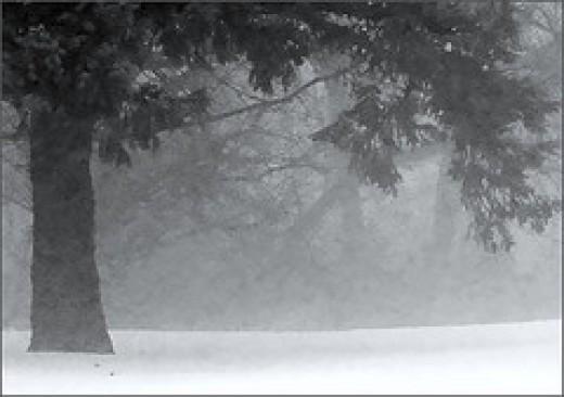 Photo Courtesy of Thiajmarie's Flickr. http://www.flickr.com/photos/smokeandmirrors/