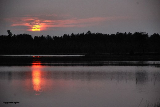 Sunset on a flooding on the Shelldrake River in Michigan's U.P. One has to get out of the yard sometime.
