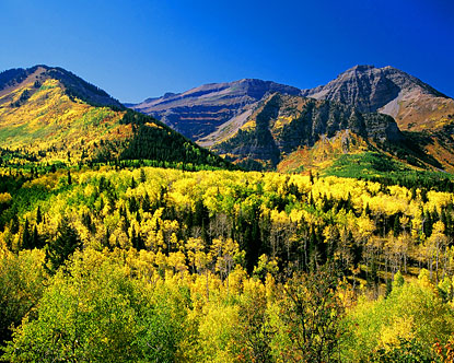 Autumn colors on Mt. Timpanogos