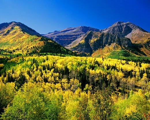 Autumn colors on Mt. Timpanogos