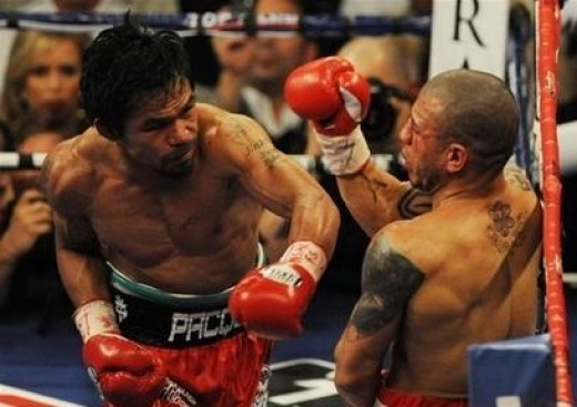 Manny Pacquiao throwing a menacing left handed punch against hapless Miguel Cotto.