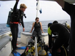 Scuba diving is very popular at Rottnest