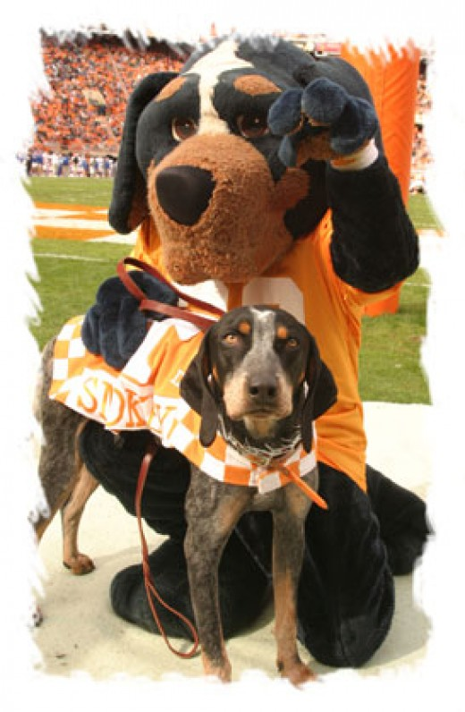 Both Smokey's Together