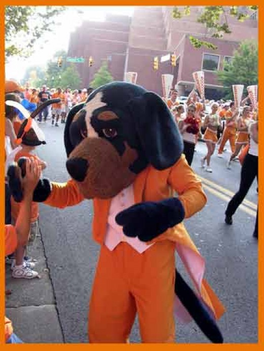 Costumed Smokey
