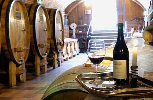Wine tour safety