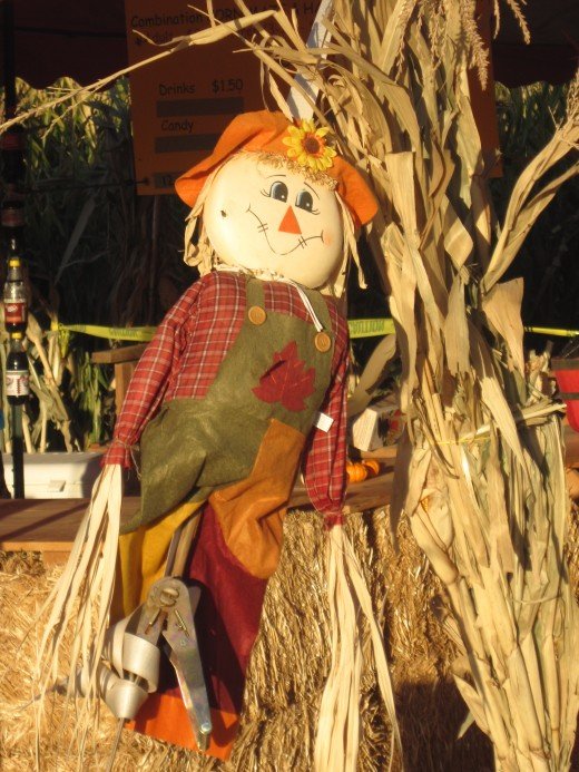 Thanksgiving harvest decoration