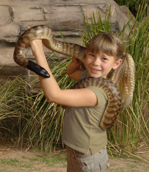 Bindi Irwin a natural just like her dad Steve the original 'crocodile man'