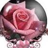 TammyK profile image