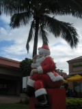 How to Survive a Christmas in Hawaii