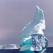 ftwells profile image
