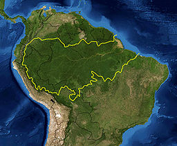 Map of the Amazon rainforest ecoregions as delineated by the WWF. Yellow line approximately encloses the Amazon drainage basin. National boundaries shown in black. Satellite image from NASA via Wikipedia.