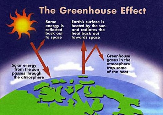 the greenhouse effect essay