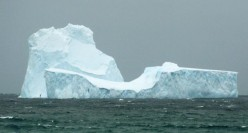 Climate Change.  Antartica & Icebergs near New Zealand