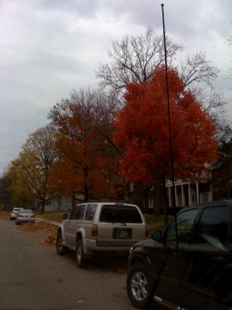 The foliage outside the cafe was beautiful in October!