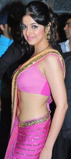 Divya Khosla Hot Saree Stills