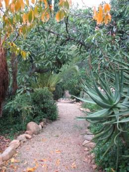 The Zen path