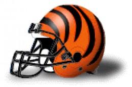 Bengals 8-3