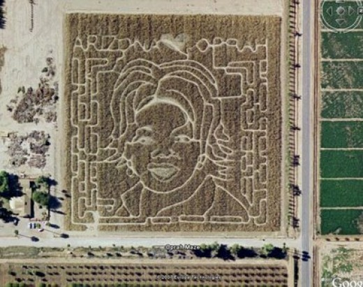 Arizona's Schnepf Farms carves a maze with the outline of a famous person into its 10-acre cornfield each year around Halloween farmers.Tribute to Oprah Winfrey.