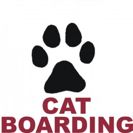 Tips for Boarding Your Cats