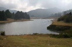 India's Rain-forests - Anshi Nature Camp