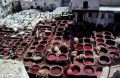 """On the other hand if you are in Fez this is difficult to miss, the smell will guide you to the tanneries"""""""