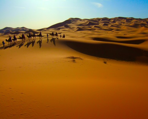 Morrocco as you probably won't see it, to see this you would need to travel deep south.