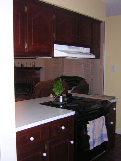 Dated Kitchen Counter and Cabinets