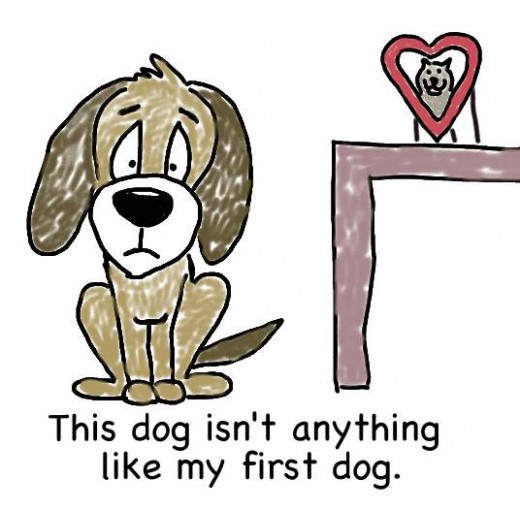 Have You Considered A Pre-Owned Dog?  You Can Get A Great Deal On Pets... Through Adoption!
