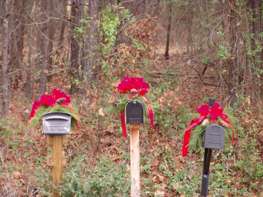 December 2009 Calendar Photo