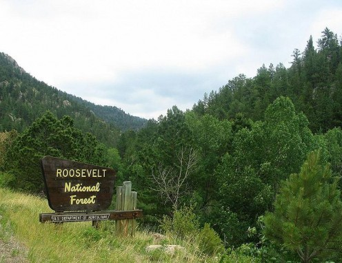 Roosevelt National Forest, Fort Collins Area