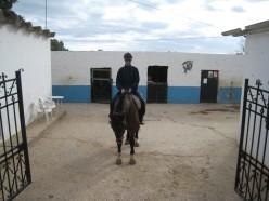 Horse riding in Portugal: Albufeira Riding Centre at Vale Navio in the Algarve