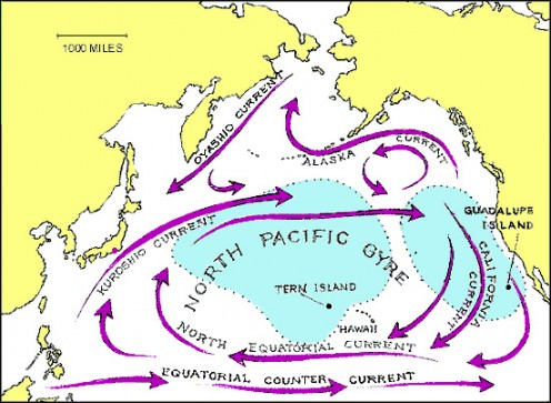 "An area of the North Pacific Subtropical Gyre known as the ""eastern garbage patch"" or ""Great Pacific Garbage Patch"" contains ten million tons of waste."