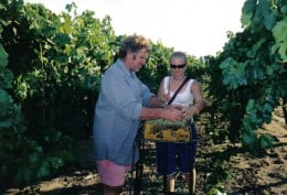 Trevor & Bonnie Packing Table Grapes