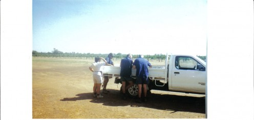 The Ute and Workers on a Fine Day