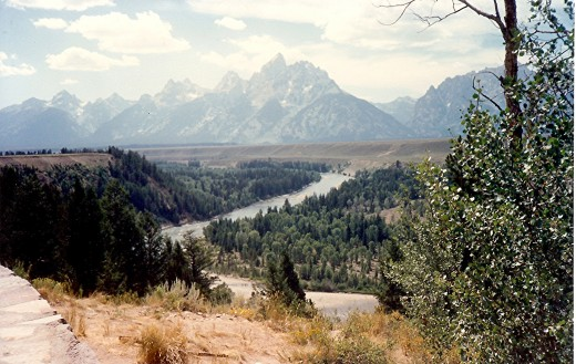Ox-Bow Bend Turnout of the Snake River