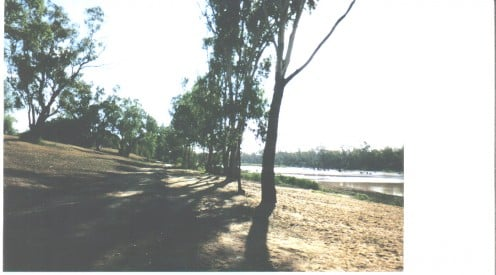 The Balonne River is usually up to the line of trees