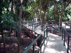Dumaguete zoo