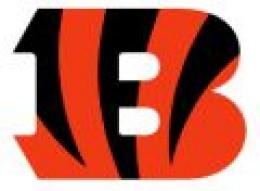 Bengals 9-4