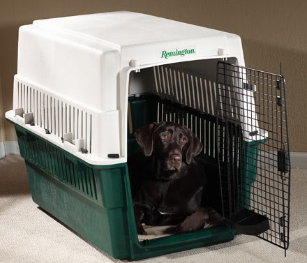 Plastic Dog Carrier or Kennel