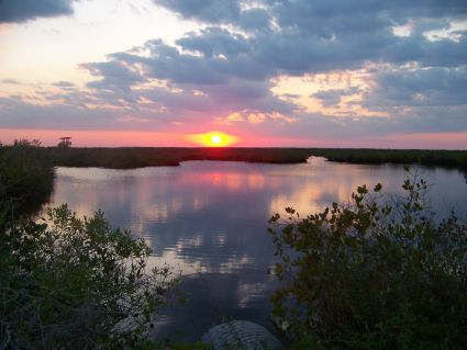 Florida wildlife preserve at sunset. by the Author