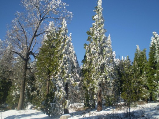 Lake Arrowhead is a winter wonderland in December.