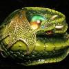 mmloda profile image