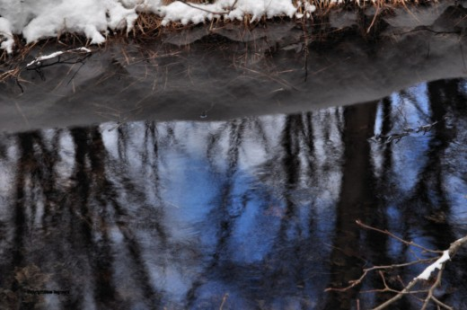 Blue sky reflects in the creek.
