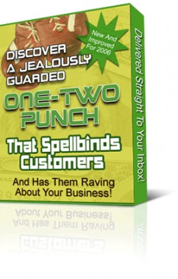 One Two Punch marketing course. E-course teachings the fundamentals on how to generate more sells online.