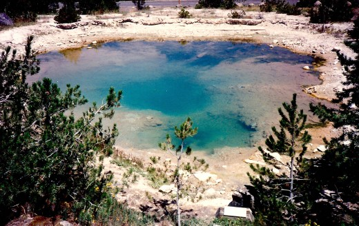 Algae colored pool in Yellowstone